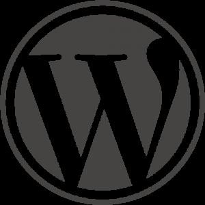 hjelp wordpress nettside